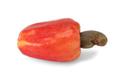 Brazilian Caju Cashew Fruit Royalty Free Stock Photography