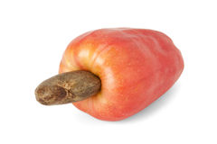 Brazilian Caju Cashew Fruit Royalty Free Stock Images