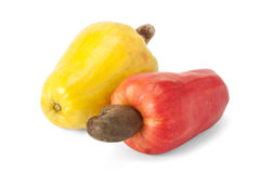 Brazilian Caju Cashew Fruit Royalty Free Stock Photos