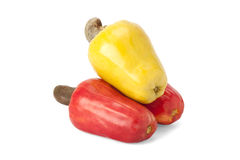 Brazilian Caju Cashew Fruit Royalty Free Stock Photo