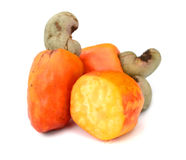 Brazilian Caju Cashew Fruit Royalty Free Stock Image