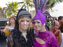 Brazilian Carnival Stock Images