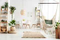 Dining room with plants stock images