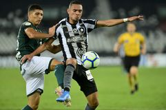Brazilian Championship 2019. Rio, Brazil - october 09, 2019: Luiz Fernando and L. Barcia  player in match between Botafogo and Goias by the Brazilian