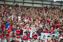 Brazilian championship 2016. Rio de Janeiro, Brazil - november 27, 2016: fan player in match between Flamengo and Santos by the Brazilian championship in Stock Photos