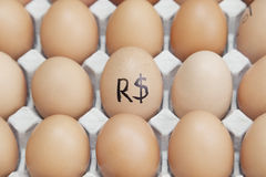 Brazilian currency sign on egg surrounded by plain brown eggs in carton Royalty Free Stock Image