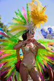 Brazilian Day in Los Angeles Royalty Free Stock Photos