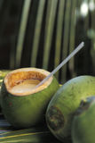 Brazilian drinks: batida de coco. Stock Photos