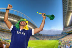 Brazilian fan celebrating at stadium Royalty Free Stock Image