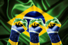 Brazilian fans Royalty Free Stock Photo