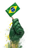 Brazilian fans patriot Royalty Free Stock Image
