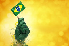 Brazilian fans patriot Stock Photos