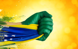 Brazilian fans patriot Royalty Free Stock Photography