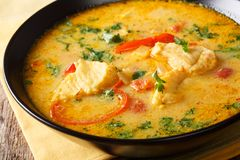 Brazilian fish Stew Moqueca Baiana with vegetables and coconut Stock Photography