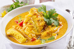 Brazilian Fish Stew Royalty Free Stock Photography