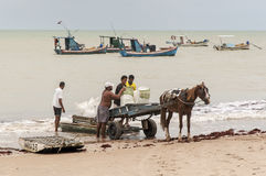 Brazilian fishermen Royalty Free Stock Photos