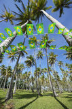 Brazilian Flag Bunting Coconut Palm Trees Grove Stock Photography