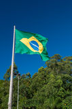 Brazilian Flag. On the mast. Behind it the blue sky and the green trees Stock Images
