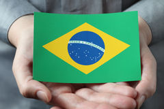 Brazilian flag in palms Royalty Free Stock Photography