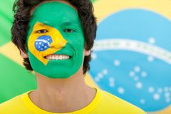 Brazilian flag portrait Royalty Free Stock Photos
