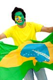 Brazilian flag portrait Stock Photo