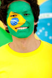 Brazilian flag portrait Royalty Free Stock Images