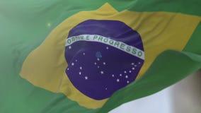 Brazilian stock footage