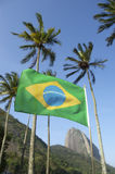 Brazilian Flag Sugarloaf Palm Trees Rio Brazil Stock Photography