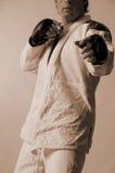 Brazilian Jiu-Jitsu. Sepia male in jiu-jitsu stance Stock Photos