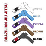 Brazilian Jiu Jitsu Belts Illustration Royalty Free Stock Images