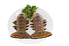 Brazilian Lobster Tails Royalty Free Stock Photo