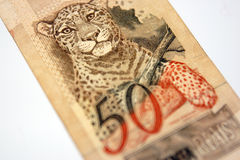 Brazilian money Royalty Free Stock Photography