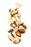 Brazilian nut Stock Images