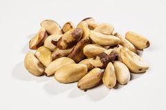 Brazilian Nut Stock Image