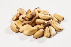 Brazilian Nut Stock Image