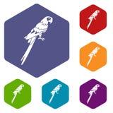 Brazilian parrot icons set hexagon Royalty Free Stock Images