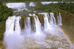 Brazilian party of the falls Iguazu Stock Image