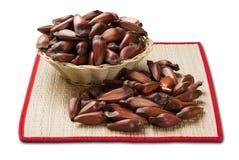 Brazilian pine nuts. White background. Brazilian pine nuts. White background Royalty Free Stock Photo