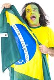 Brazilian Supporter Stock Photography