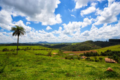 Brazilian tropical landscape Royalty Free Stock Images