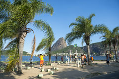 Brazilians Exercising Outdoors at Sugarloaf Mountain Royalty Free Stock Image