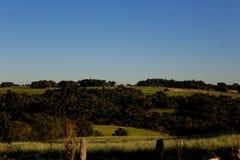 Brazillian lantligt landskap Royaltyfria Foton