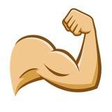Brazo fuerte del músculo ilustración del vector