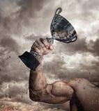 Brazo masculino cosechado con la taza del ganador imagen de archivo