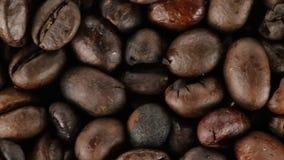 Brazylia Życiorys kawa zbiory
