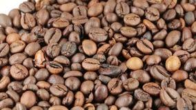 Brazylia Życiorys kawa zdjęcie wideo