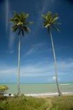 Brazylia plaża obrazy stock