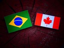 Brazylijczyk flaga z kanadyjczyk flaga na drzewnym fiszorku odizolowywającym fotografia royalty free