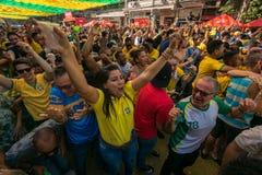 Brazylijscy fan piłki nożnej Świętuje zwycięstwo Obrazy Stock