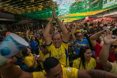 Brazylijscy fan piłki nożnej Świętuje zwycięstwo Obrazy Royalty Free